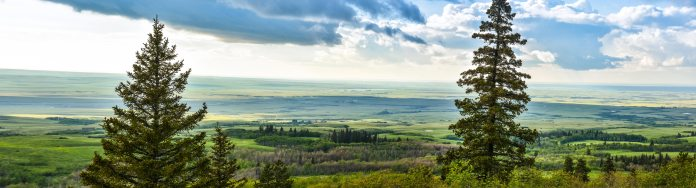 Cypress-Hills-Lookout-pano