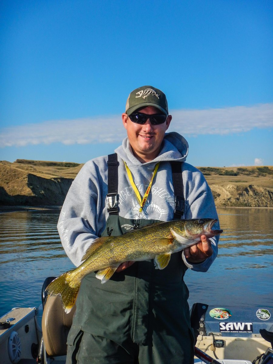 Walleye, Traverse Reservoir, Alberta